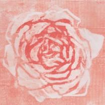 Puupiirros Rose, jouluruusu